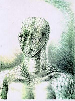 reptil.jpg